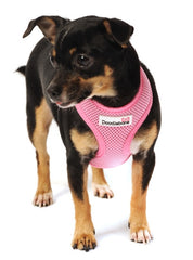 Doodlebone Pink Padded Mesh Harness