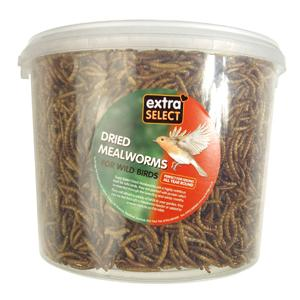 Extra Select Mealworms