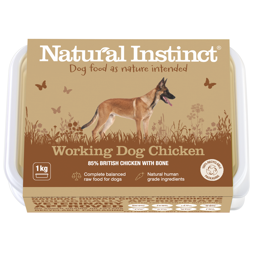 Natural Instinct Working Chicken