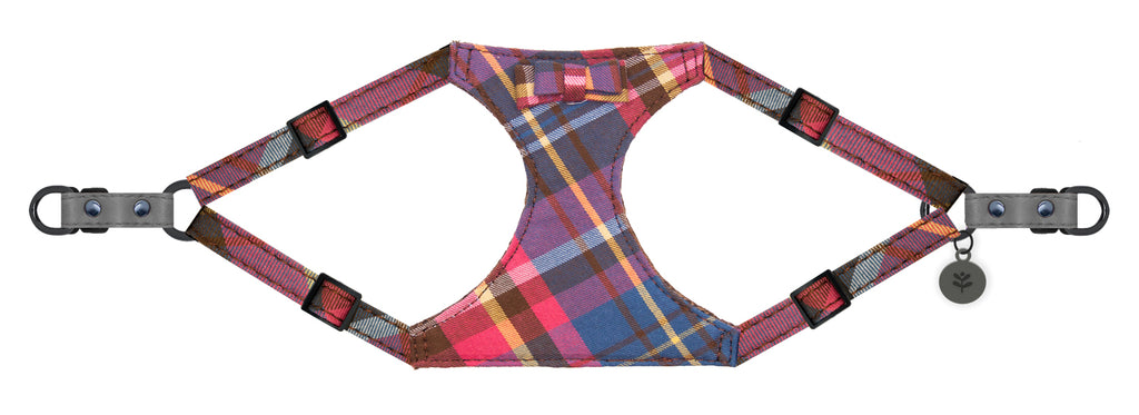 Sotnos Puppy Bow Tartan w/Grey Dog Harness