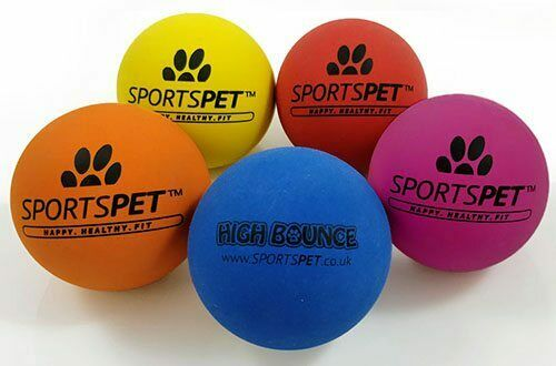 SportsPet High Bounce Dog Ball