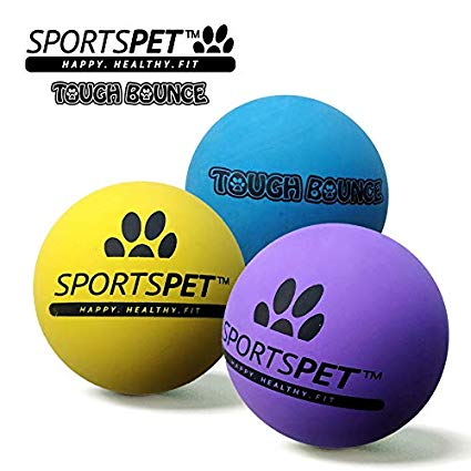SportsPet Tough Bounce Dog Ball