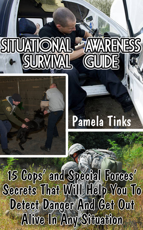 Situational Awareness Survival Guide: 15 Cops' and Special Forces' Secrets That Will Help You To Detect Danger And Get Out Alive In Any Situation
