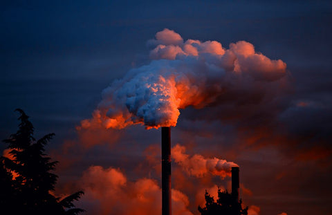Textile industry one of the major pollutants