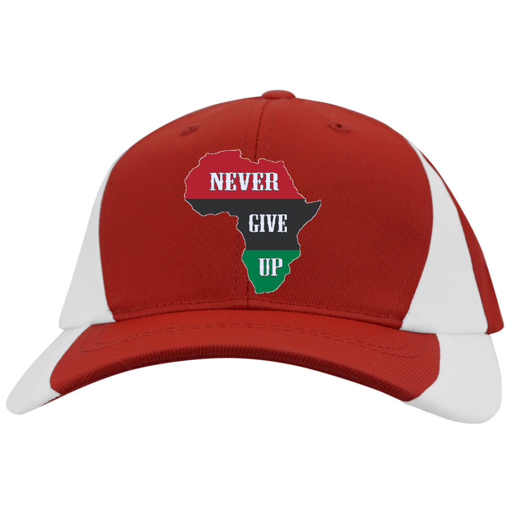 41dbedb0c46 Never Give Up Mid-Profile Colorblock Hat – Legit Money Tees