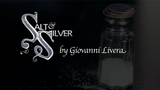 Salt & Silver by Giovanni Livera - Mystique Factory