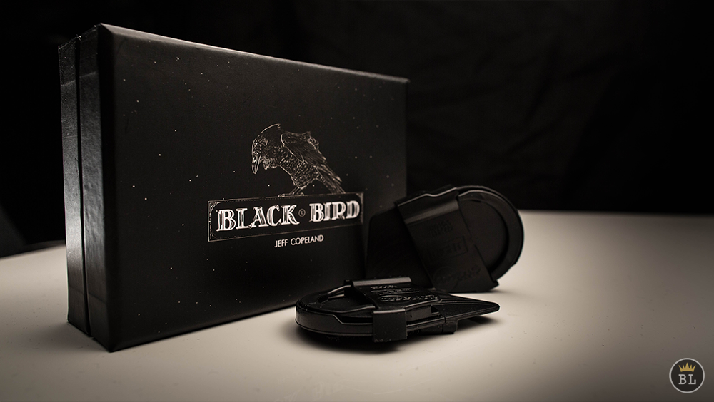 BlackBird by Jeff Copland