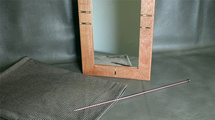 Flexible Mirror/Needle Through Mirror by Tony Karpinski