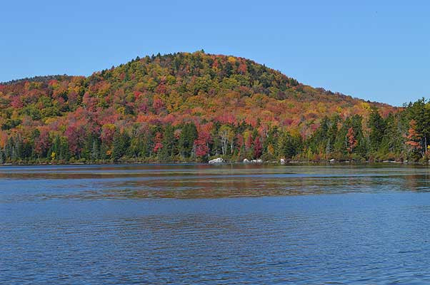 Kettle Pond Foliage