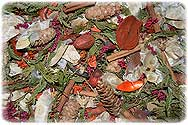 Christmas Tree Potpourri