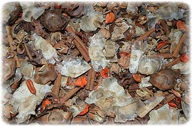 Cinnamon Red Hot Potpourri