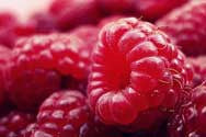 Raspberry Fragrance Oil - YankeeScents Potpourri - 1