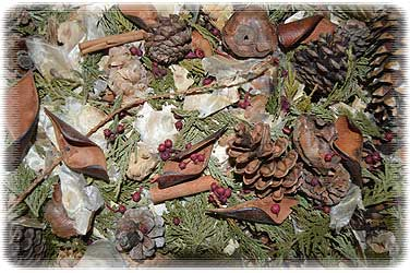 Winter Pine Potpourri