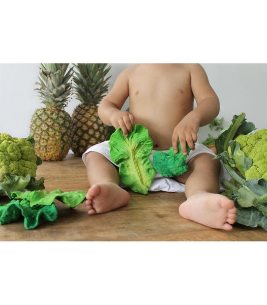 Kendall the Kale Teething Toys Oli & Carol