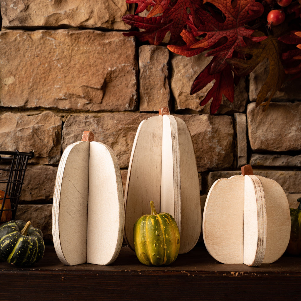 Slotted Pumpkins - 3 Sizes