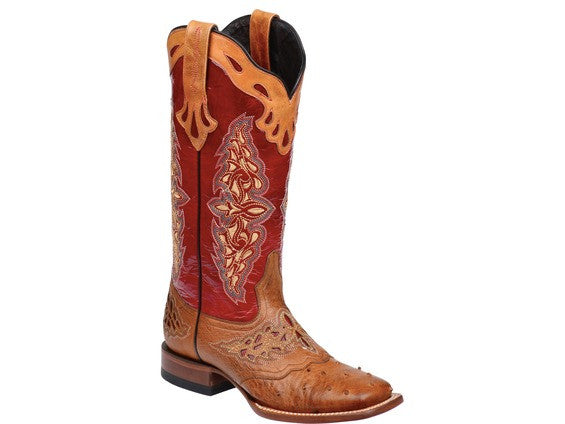 058cc04988b Lucchese Women's Amberlyn Ostrich Boot M5801 - Tan/Red