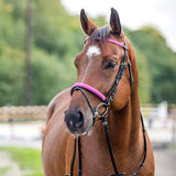 Horze Spirit Ross Bridle Pink Sparkle - Saratoga Saddlery