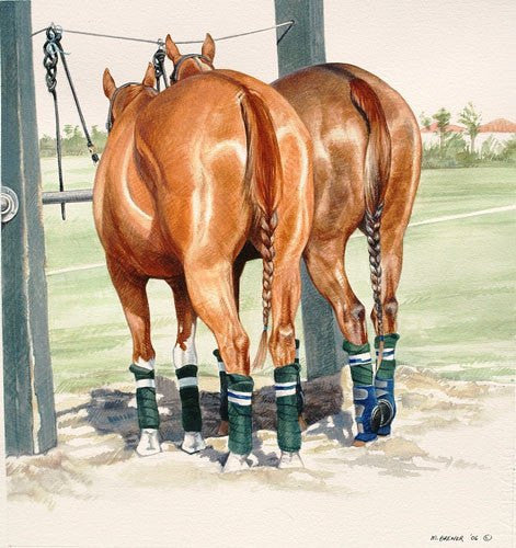 Melinda Brewer Pony Line Watercolor Painting - Saratoga Saddlery