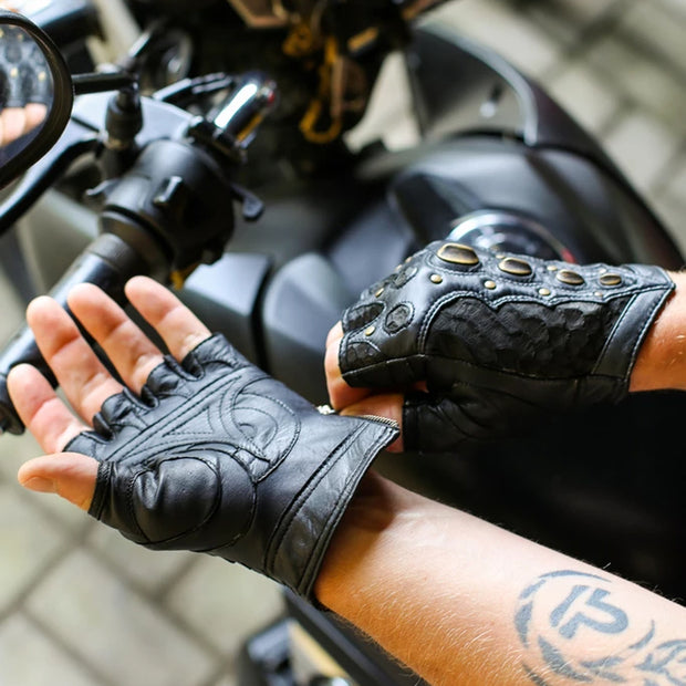 Dragon Riders | Dragon Riders Gloves | Best Dragon Riders Gloves