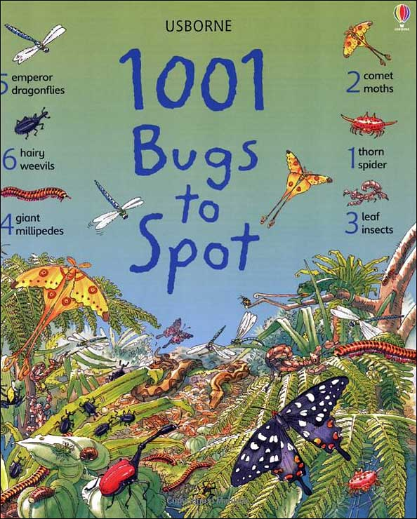 1001 Bugs to Spot by Emma Helbrough and Anna Milbourne