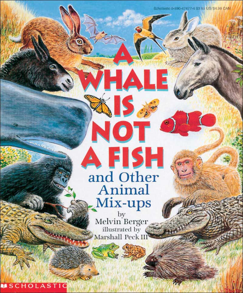 A Whale Is Not a Fish: And Other Animal Mix-Ups by Melvin Berger