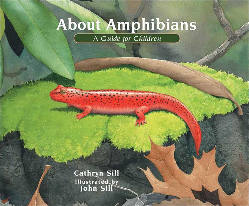 About Amphibians: A Guide for Children by Cathryn Sill