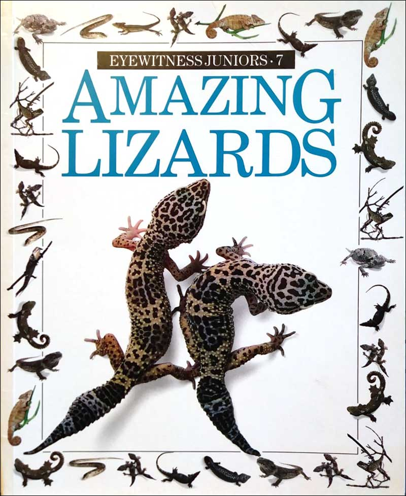 Amazing Lizards (Eyewitness Juniors series) by Trevor Smith, photographs by Jerry Young