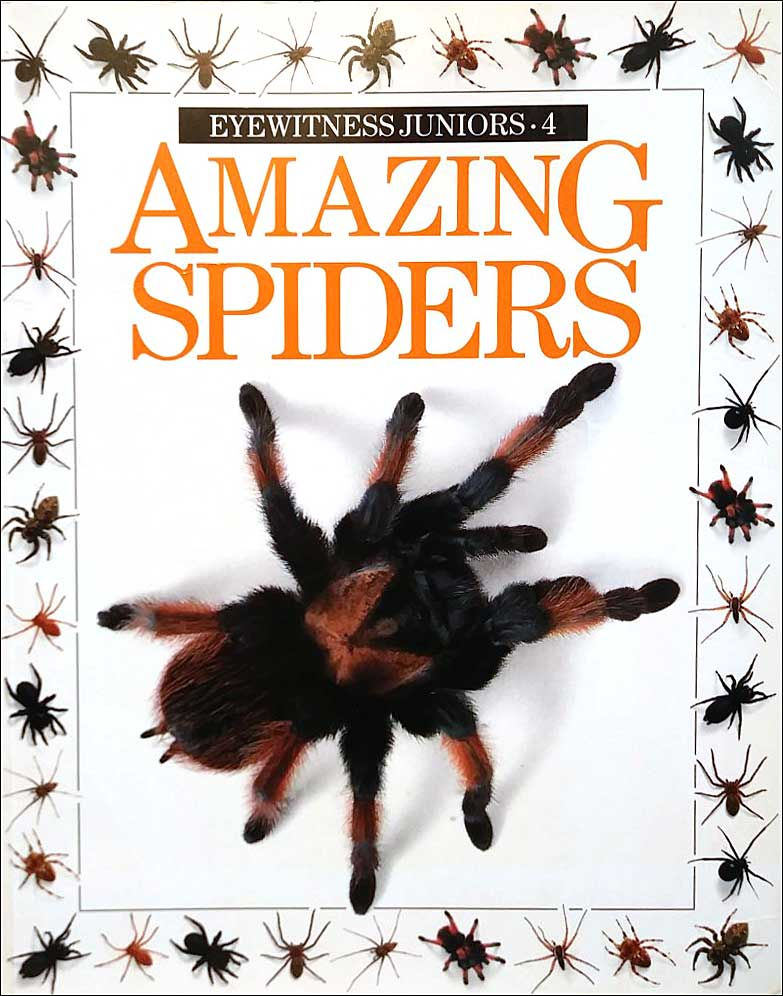 Amazing Spiders (Eyewitness Juniors series) by Alexandra Parsons