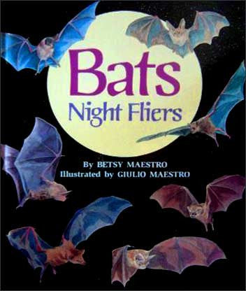 Bats-Night-Fliers