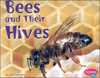 Bees and Their Hives