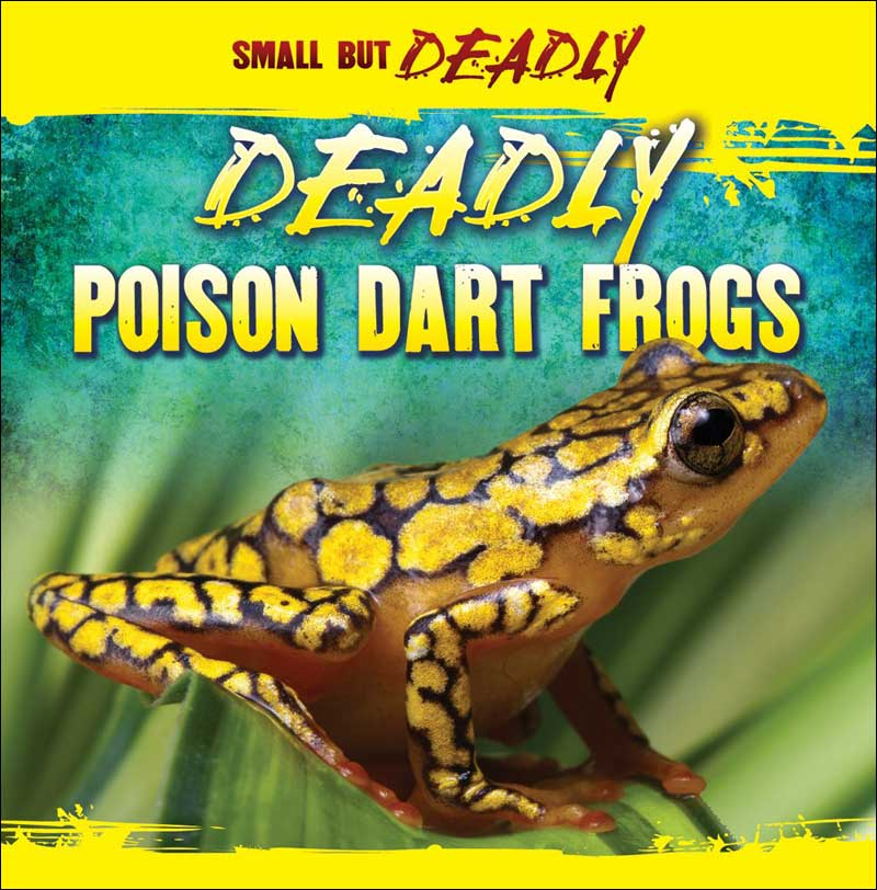 Deadly Poison Dart Frogs  by Lincoln James