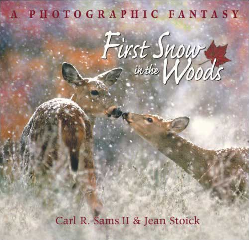 First Snow in the Woods: A Photographic Fantasy by Carl Sams & Jean Stoick