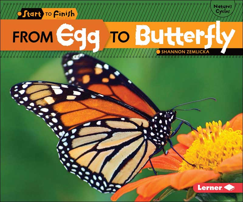 From Egg to Butterfly (Start to Finish series) by Shannon Zemlicka