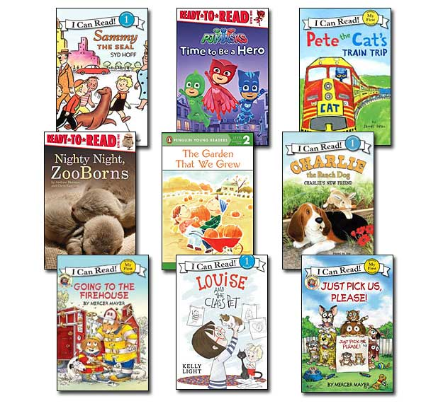 10 leveled books for Guided Reading H and DRA 14 (#H4)