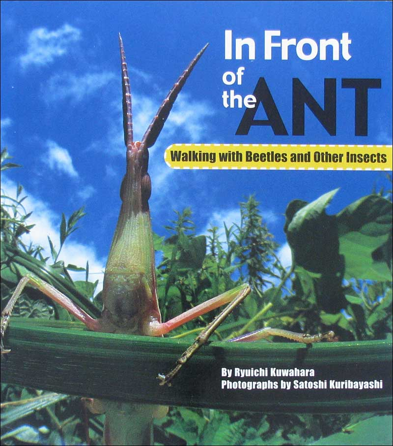 In Front of the Ant: Walking with Beetles and Other Insects by Ryuichi Kuwahara