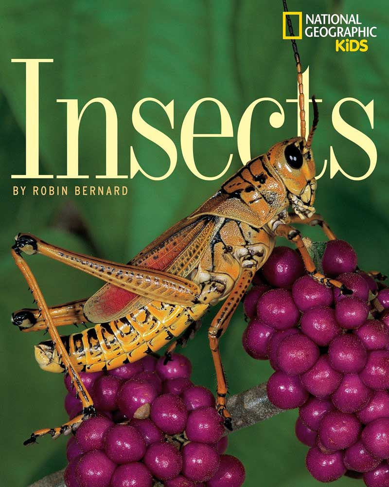 Insects (National Geographic Society) by Robin Bernard