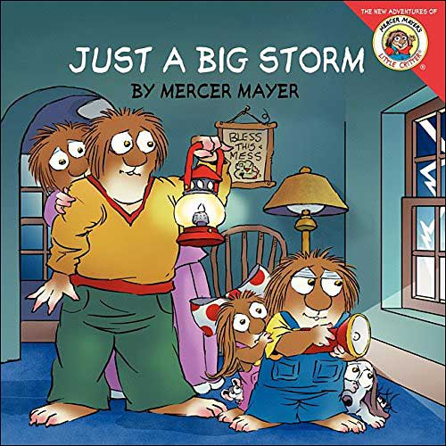 Just a Big Storm by Mercer Mayer