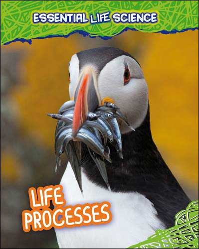 Life Processes (Essential Life Science) by Richard Spilsbury
