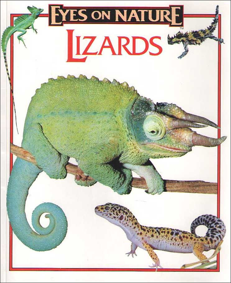 Lizards (Eyes on Nature) by Donald Olson