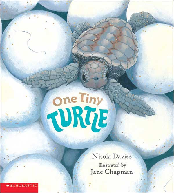One Tiny Turtle by Nicola Davies, illustrated by Jane Chapman