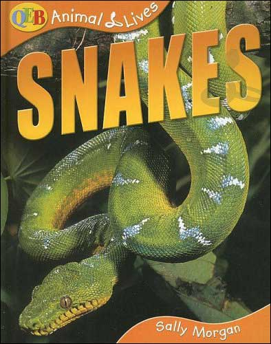 Snakes by Sally Morgan