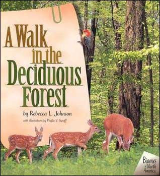 A Walk in the Deciduous Forest  by Rebecca Johnson