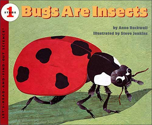 Bugs Are Insects  by Anne Rockwell