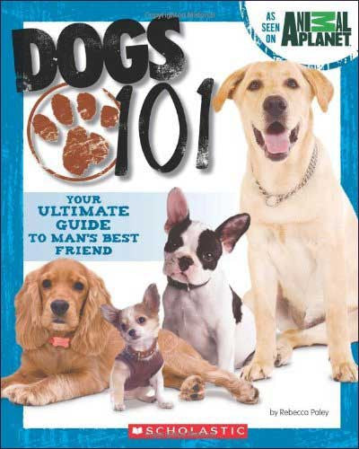 Dogs 101  by Rebecca Paley