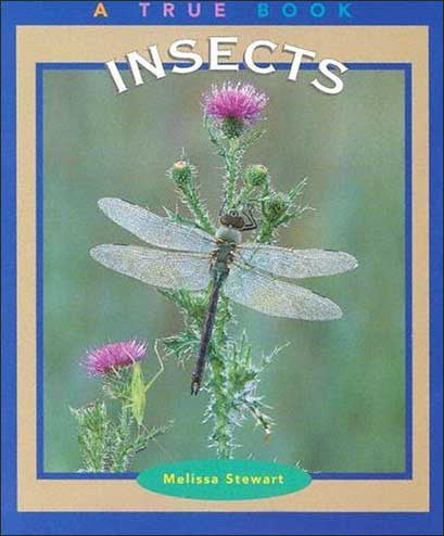 Insects (A True Book) by Melissa Stewart