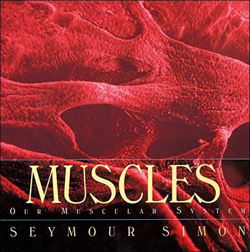 Muscles: Our Muscular System by Seymour Simon