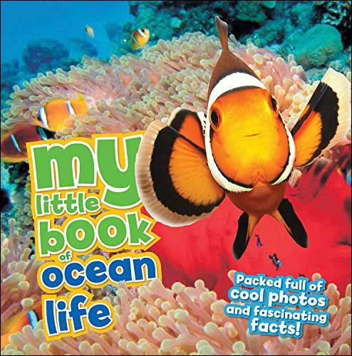 My Little Book of Ocean Life  by Camilla de la Bedoyere
