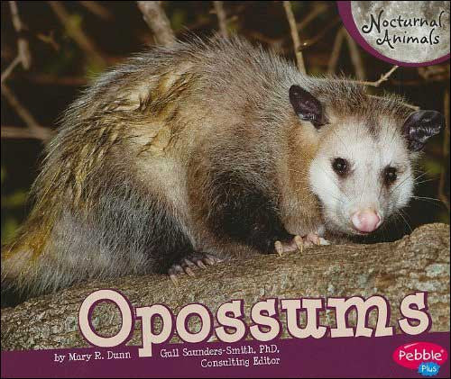 Opossums (Nocturnal Animals)  by Mary R. Dunn