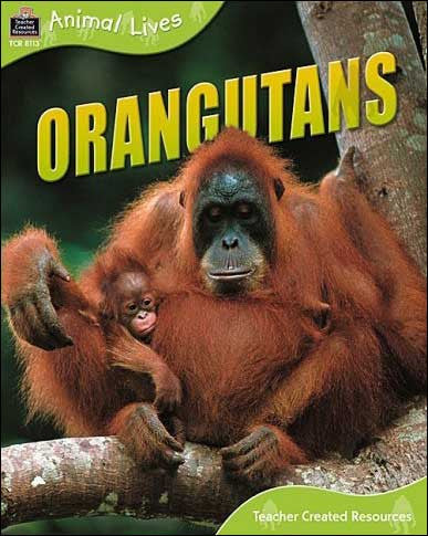 Orangutans  (Animal Lives) by Sally Morgan