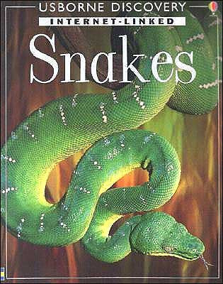 Snakes by Rachel Firth